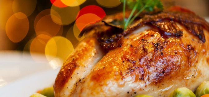chicken-close-up-dinner-265393